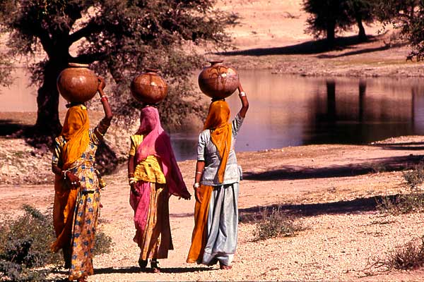 Indian Rajasthani women fetching water using pots from oasis