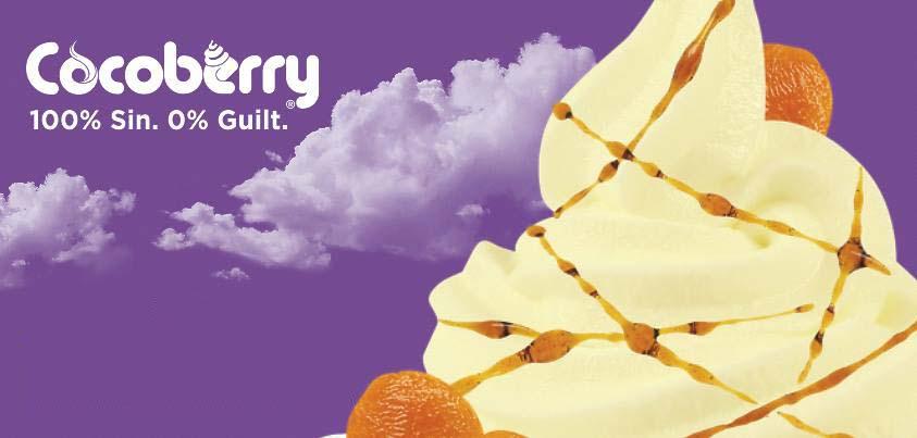 cocoberry zero calorie dessert gs bhalla