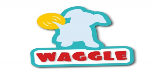 waggle featured