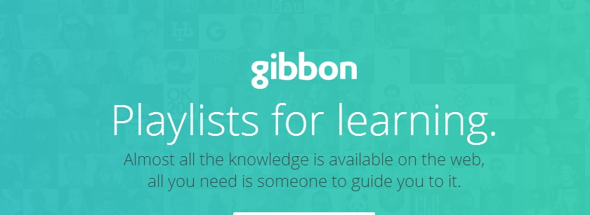gibbon featured